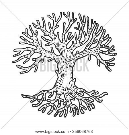 Round Circle Crown Tree Sketch Engraving Vector Illustration. T-shirt Apparel Print Design. Scratch