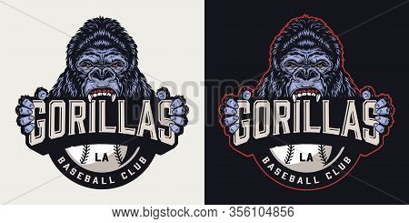 Vintage Baseball Club Colorful Logo With Angry Strong Gorilla Mascot And Baseball Ball Isolated Vect