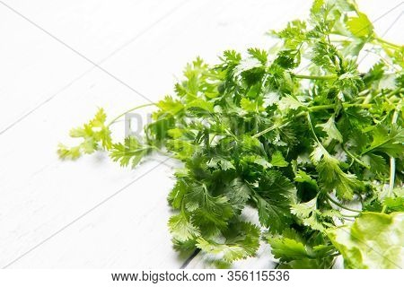 Bunches Of Fresh Coriander Leaves, Coriander It Is Also Known As Chinese Parsley ,