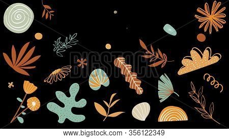 Drawn Flower Patterns Fill Black Background. Animation. Animated And Delicate Patterns Of Flowers An
