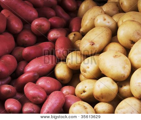 Big bunch of natural potatoes at market