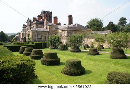 Trees. Topiary. Roof.Chimney Stacks. Garden Art/ Design