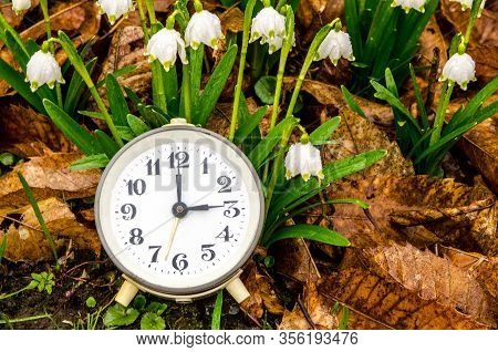 Daylight Saving Time. Retro Styled Photo. Vintage Black Alarm Clock On Autumn Leaves. Time Change Ab