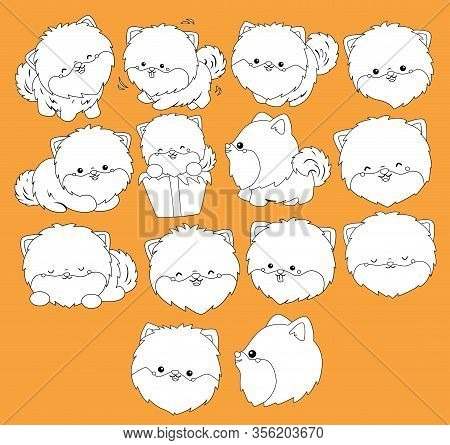 A Vector Of Pomeranian Dogs In Black And White Colors