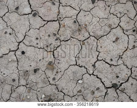 Cracked Drought Earth, Dry Land Surface, Gray Cracked Ground Surface Texture, Cracked Background