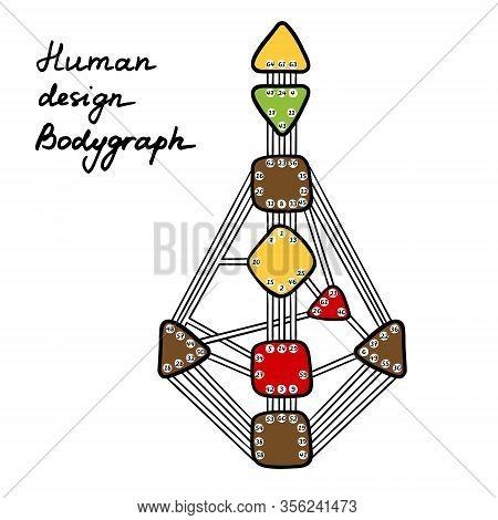 Human Design Bodygraph. Nine Colored Energy Centers.