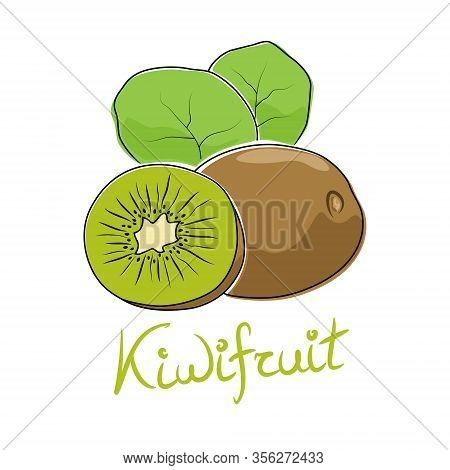 Kiwi And Text Kiwifruit, Tropical Fruit Isolated On White Background, Vector Illustration