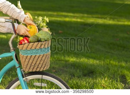 Live Healthy. Woman Collecting Fresh Healthy Product Into Basket Over Green Grass In Park, Copy Spac