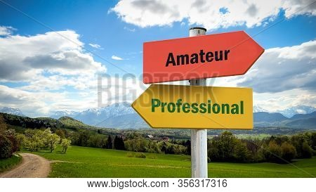 Street Sign The Direction Way To Professional Versus Amateur