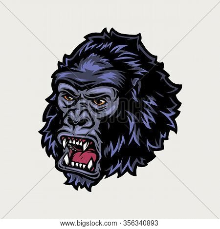 Ferocious Gorilla Head Colorful Vintage Concept Isolated Vector Illustration