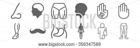 Set Of 12 Body Parts Icons. Outline Thin Line Icons Such As Male Legs Couple, Hips Human Body Part,