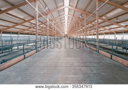 Large Hangar. Empty Spacious Large Room, Hangar. Construction Of The New Barn.