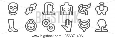 Set Of 12 Human Body Icons. Outline Thin Line Icons Such As Larynx, Hand, Eyeball, Pancreas, Hair, K