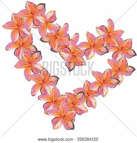 Pink With Yellow Frangipani Plumeria Flowers In Shape Of Heart On White Background.valentine Card. M
