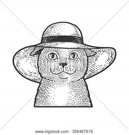Cat In A Wide Brimmed Hat Sketch Engraving Vector Illustration. T-shirt Apparel Print Design. Scratc
