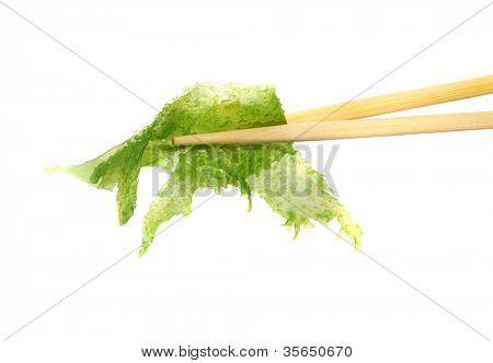 japanese sushi algae