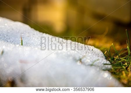 Snow Piles In The Dormant Grass During Wintertime In New England