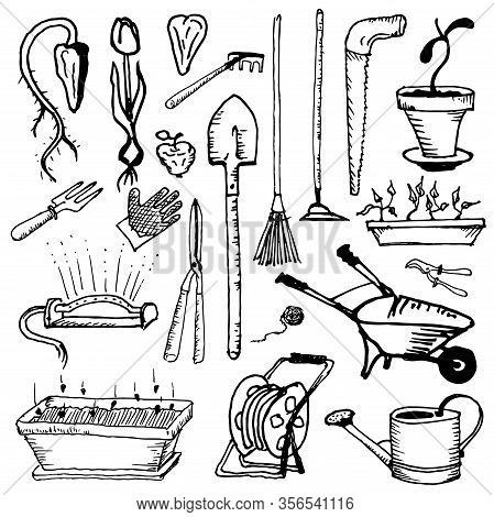 Tools For Handling, Caring And Growing A Garden. Hobbies Of Pensioners. Agriculture And Hobbies.