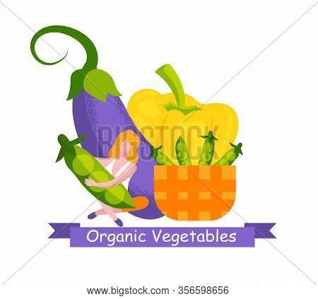 Woman With Peas In Hands. Eggplant Pepper And Basket With Peas. Organic Vegetables. Grow Organic Veg