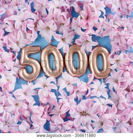 5000 Followers Card. Template For Social Networks, Blogs. Background With Pink Flower Petals. Social