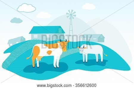 Cows Graze On Background Farm. Spotty Cow And White Calf. Vector Illustration. Natural Products. Fam