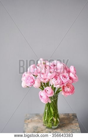 Spring Background, Flower Wallpaper. Persian Buttercup. Bunch Pink Ranunculus Flowers On Light Gray