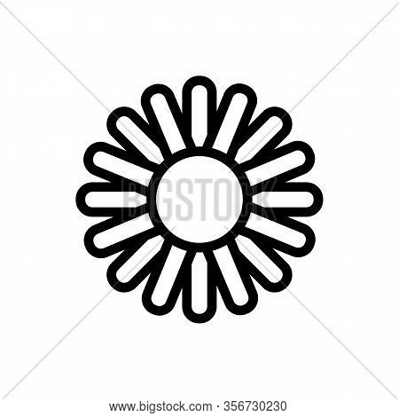 Chrysanthemum Icon Vector. Chrysanthemum Sign. Isolated Contour Symbol Illustration