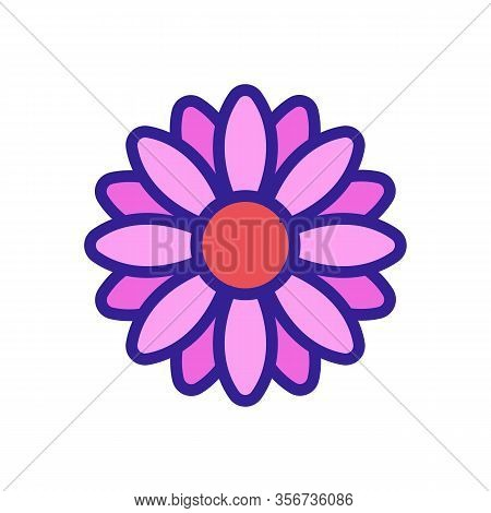 Bright Chrysanthemum Icon Vector. Bright Chrysanthemum Sign. Color Isolated Symbol Illustration