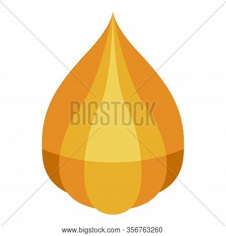 Physalis Icon. Isometric Of Physalis Vector Icon For Web Design Isolated On White Background