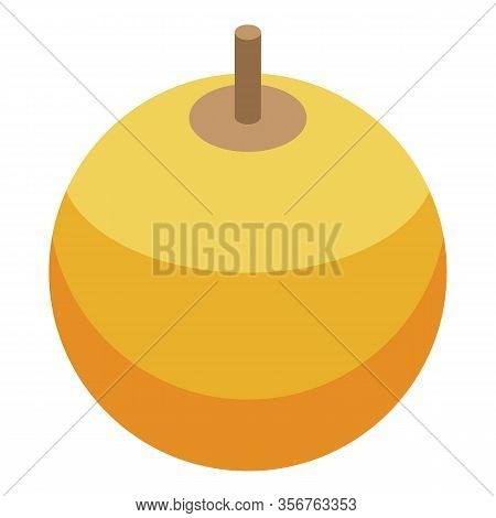 Physalis Berry Icon. Isometric Of Physalis Berry Vector Icon For Web Design Isolated On White Backgr