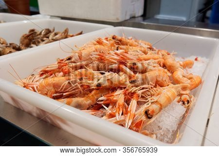 Pile of scampi on fish market iced display