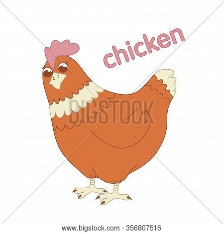 Homemade Chicken Illustration For Children Vector Animal