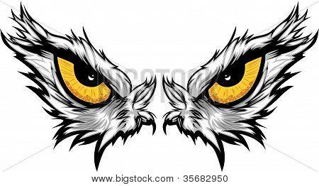 Eagle Eyes Vector Illustration