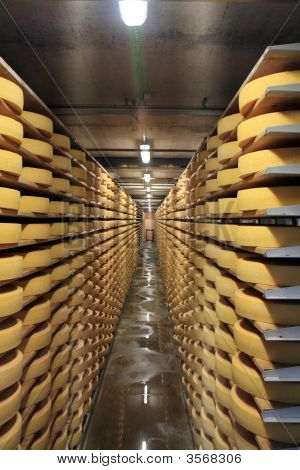 Cheese In Cellar