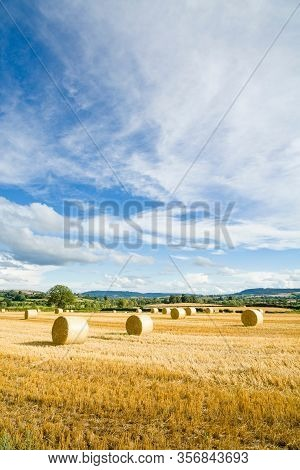 Round Hay Bales Or Haystacks In A Field, With Blue Sky. Shropshire Countryside Landscape, Uk