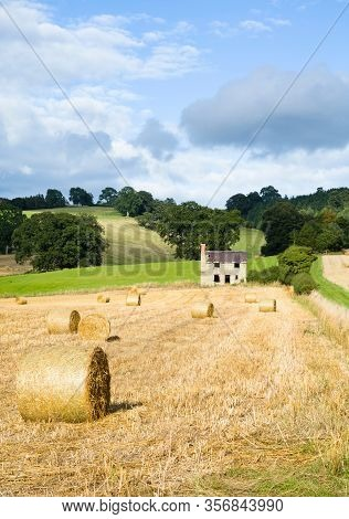Hay Bales, Circular Rolls Of Straw, In A Field In Shropshire, Uk
