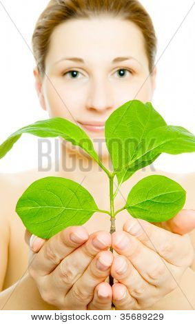 woman with young leaves in hands. Isolation on white