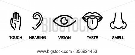 Five Human Senses: Hearing, Sight, Smell, Taste And Touch. Simple Line Icons And Color Circles Eye,