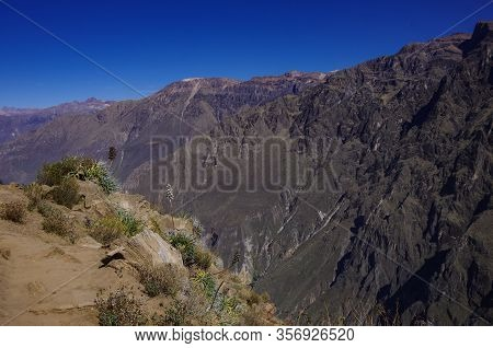 Colca Canyon Near Cruz Del Condor Viewpoint. Arequipa Region, Peru,south America.