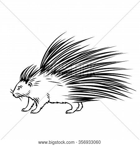 Porcupine Outline Icon. North American Animal For Zoo Design. Vector Illustration
