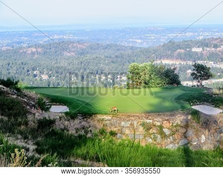 A View From The Tee Box Of A Beautiful Island Green Par 3 Surrounded By A Valley And The Ocean In Th
