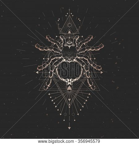 Vector Illustration With Hand Drawn Spider And Sacred Geometric Symbol On Black Vintage Background A