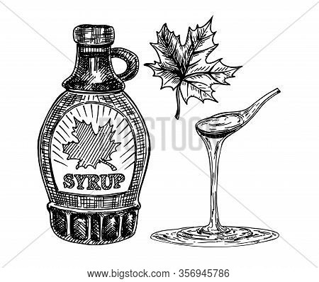 Collection Of A Bottle Of Maple Syrup And Maple Leaves. Maple Syrup Dripping From A Spoon. Hand Draw
