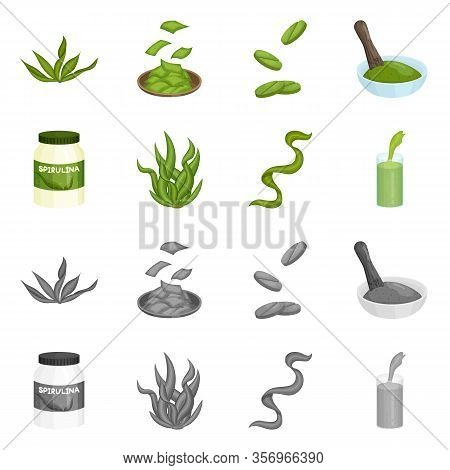 Vector Design Of Protein And Sea Symbol. Collection Of Protein And Natural Vector Icon For Stock.