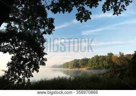 Silhouette oak trees lake water autumn morning mist fog sun Nature background Nature landscape branch twig Nature background fall tree sunrise Nature background Nature background leaves autumnal Nature background travel Nature background Nature background