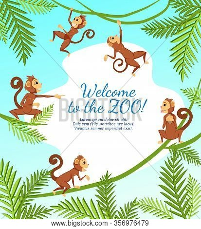 Welcome To Zoo Banner With Group Of Funny Monkeys Playing On Tree, Jumping And Hanging On Lianas Wit