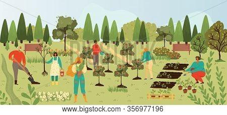 Plants And People Gardening, Harvesting Fruits On Trees Plantation In Summer Cartoon Vector Illusrtr