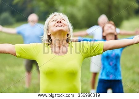 Active group of seniors doing gymnastics class together in the park