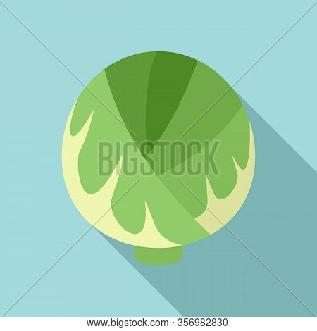 Cabbage Plant Icon. Flat Illustration Of Cabbage Plant Vector Icon For Web Design