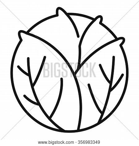 Cooking Cabbage Icon. Outline Cooking Cabbage Vector Icon For Web Design Isolated On White Backgroun
